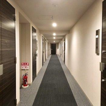 共用廊下は絨毯敷きで高級感あり。