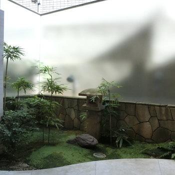 エントランスには、和風の中庭のような空間が
