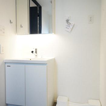 洗面台はトイレと同室ですが広いです。