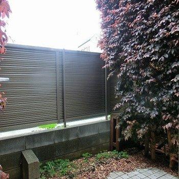 木でさえぎられた小庭。※写真は別部屋