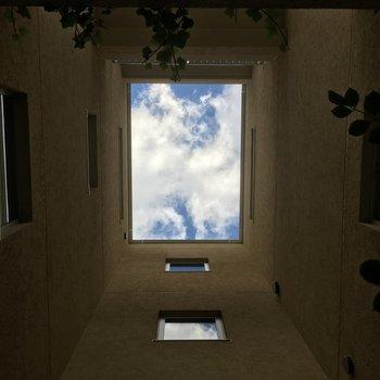 上を見上げると、空が!