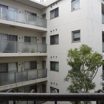 お隣のマンションが見えます。※写真は別室からの眺望です。