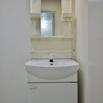 しっかりスペースが確保された洗面所
