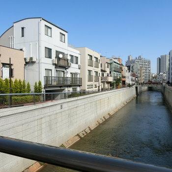 近くに流れる神田川