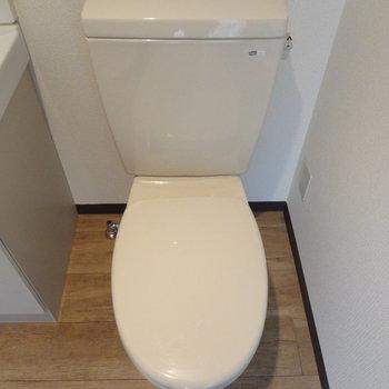 トイレは洗面台のお隣。