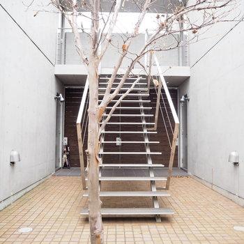 この階段を登ってお部屋へと。