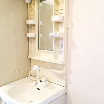 洗面台、大きめ。※写真は同間取り別部屋