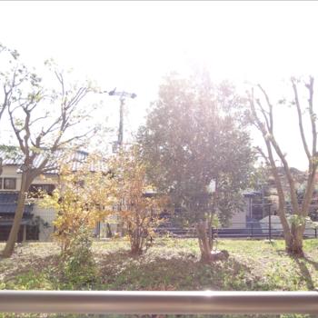 1階とは思えないすさまじい日当たり。南向き、目の前は植栽で人目も気にならない◎