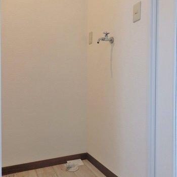 洗濯機は脱衣所の入り口に。サイズに注意です!