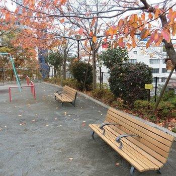 近くにあった一ツ木公園