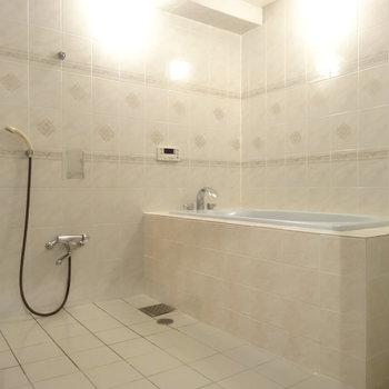 公衆浴場かよっな豪華バスルーム