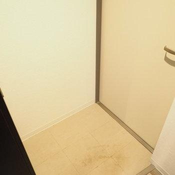 玄関はこちら(※写真は3階の同間取り別部屋のものです)