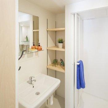 水回りは白で清潔のある空間※写真は別部屋