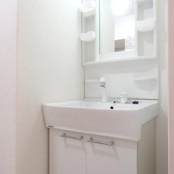 洗面台はふつうのタイプ