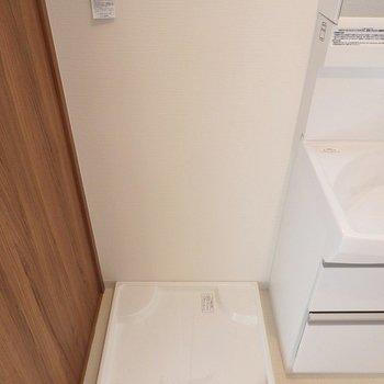 洗濯機ももちろん室内。