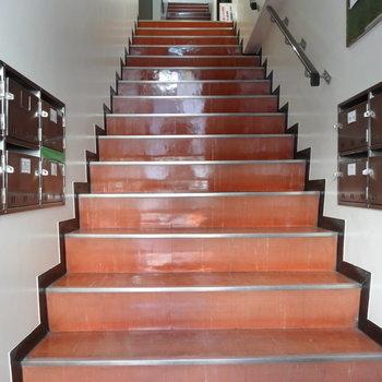 レトロなオレンジ階段で5階まで。