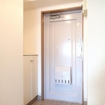 玄関はこちら。すこし築年数を感じる趣のあるドア。