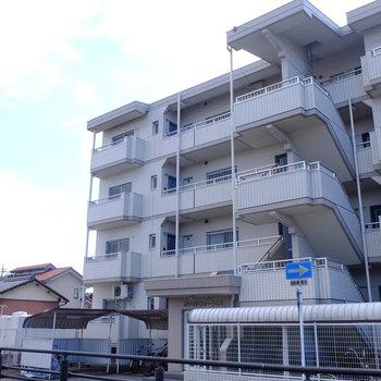 小川の畔に立つマンションです。