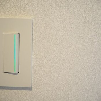 ボタンもかわいい ※写真は1階の反転間取り別部屋のものです