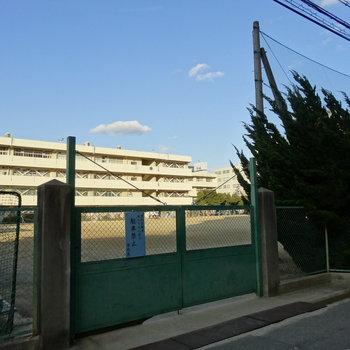 豊津第一小学校も歩いてすぐ。