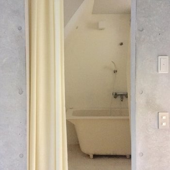 サニタリーがチラ見え!シャワーカーテンで仕切ります※写真はクリーニング前です