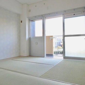 一面窓張りの気持ちいい和室。