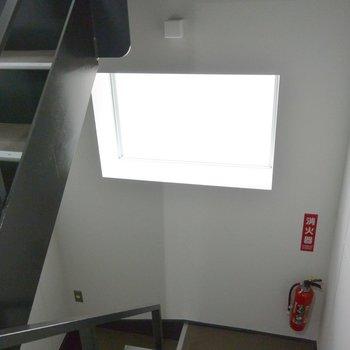共有部の階段は大きめの窓が嬉しい