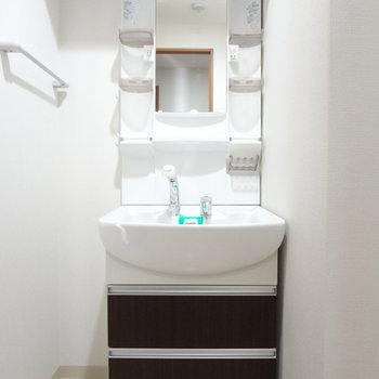 洗面台は使いやすいドレッサータイプ!
