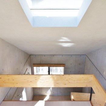 天窓。日光浴は大事※写真は同間取りの別部屋です。