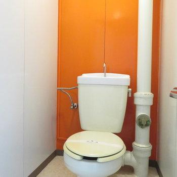 トイレの壁はオレンジです