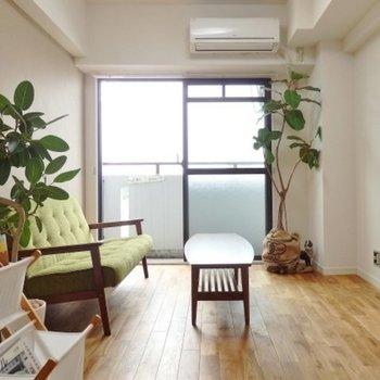 緑も良く映えるオークのお部屋に!※写真はイメージです