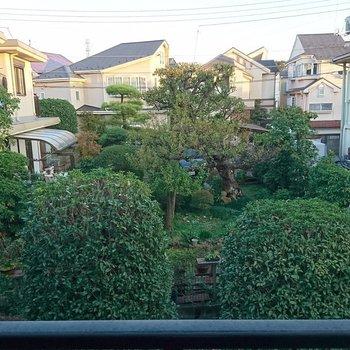 眺望が緑の借景〇
