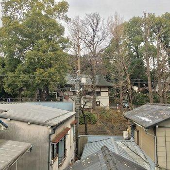 クローゼット側の窓からの眺望は、近所の神社でした!