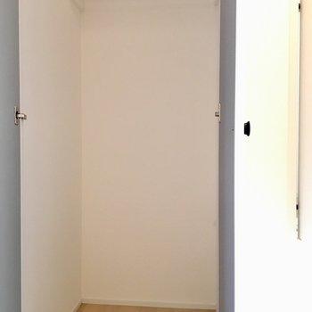 収納は廊下部分に2つ。こちらは大き方
