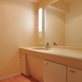 洗面台は完全個室。どーーーんと大きく、忙しい朝は3人くらい同時に立てますね。