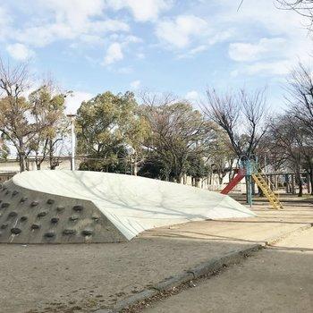 すぐ横には広い公園もある♪