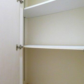 廊下の収納スペースです。 ※写真は別部屋