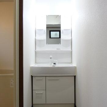 独立洗面台にはシャワーも。