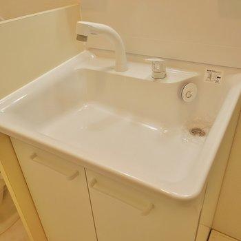 洗面が広くて使いやすい。※写真は、前回撮影時のもの
