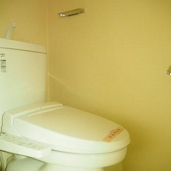 個室のトイレです。※フラッシュを付けて撮影しています。