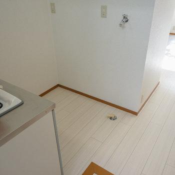 キッチン後ろに洗濯パンと冷蔵庫を。