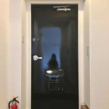 ピカピカブラックに塗り直されたドアの玄関。
