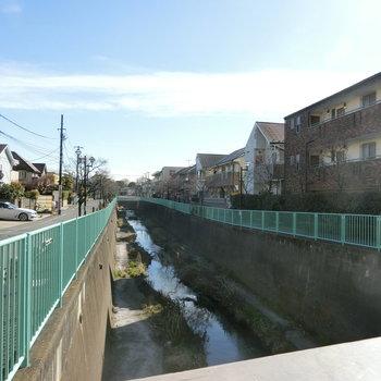 月見橋から神田川を眺める