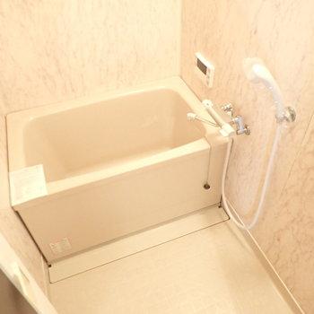 お風呂はバスタブを新品に変更済み!