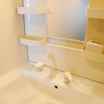 使いやすそうな大きめ洗面台
