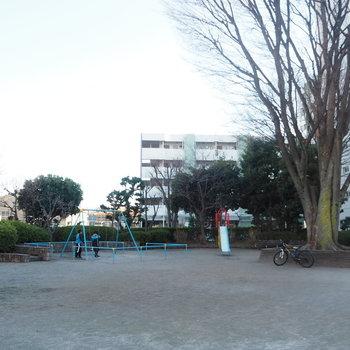 目の前は公園で子どもたちが遊んでいます〜