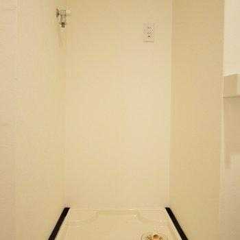 ついでに洗濯パンも一緒の空間。(※写真は2階の同間取り別部屋のものです)