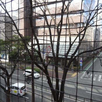 都会の眺めは鳥よけネットと共に・・・
