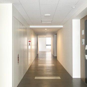 共用部の廊下。ホテルみたいだ!