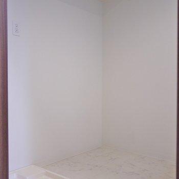 後ろに洗濯置場と冷蔵庫置場。※写真は、同タイプの別室。
